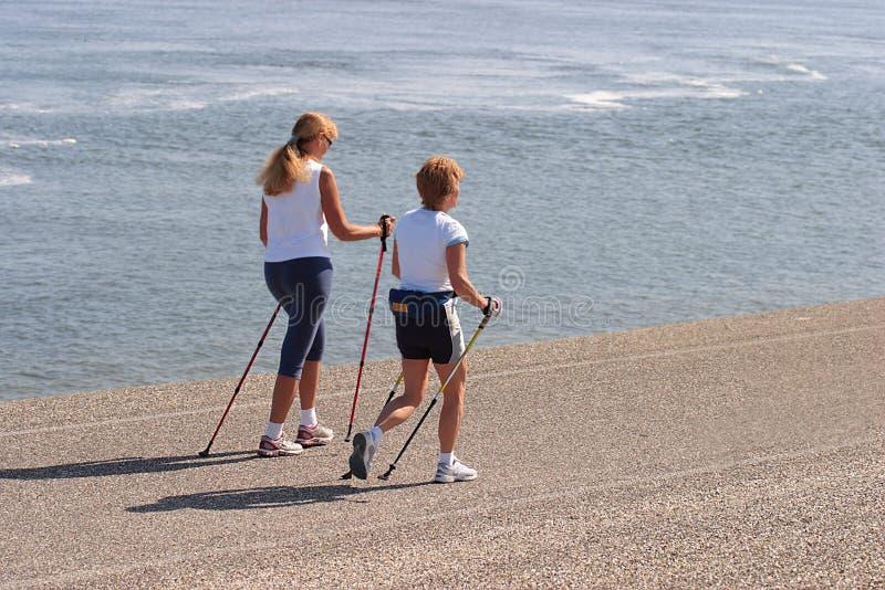 Download Camminare nordico immagine stock. Immagine di camminare - 898793