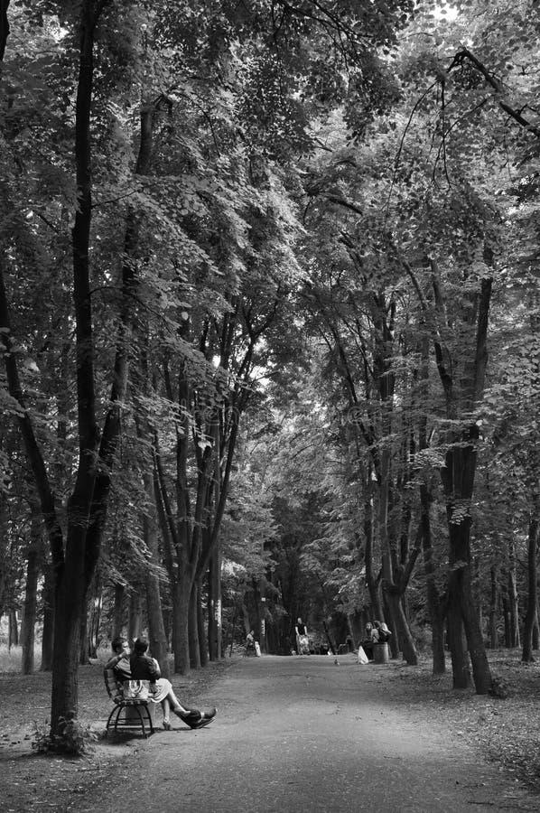 camminata fotografia stock
