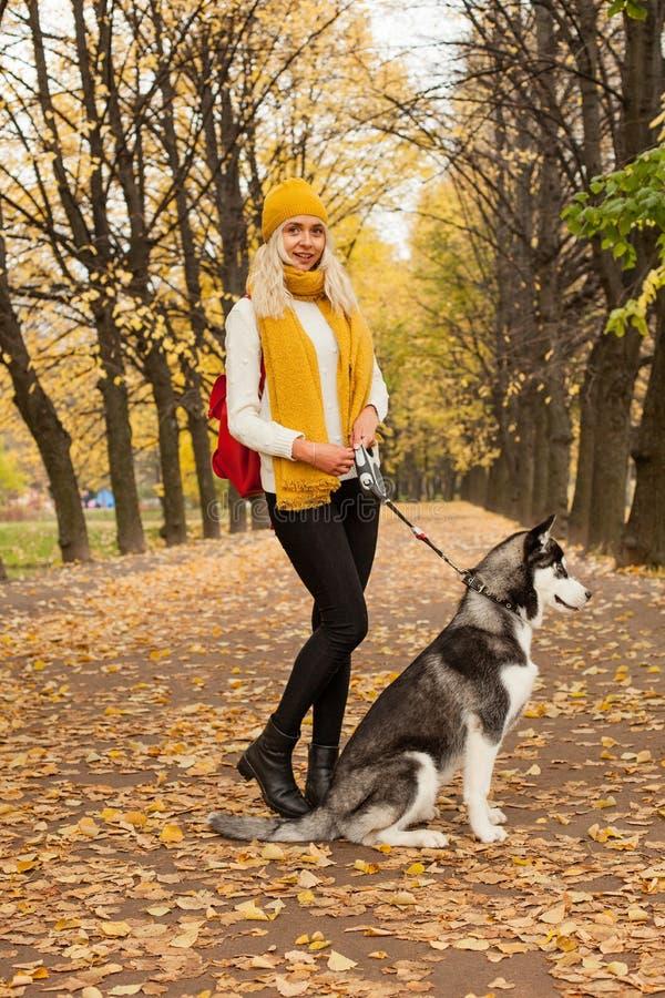 Camminata della donna e del cane di Attractivel immagine stock