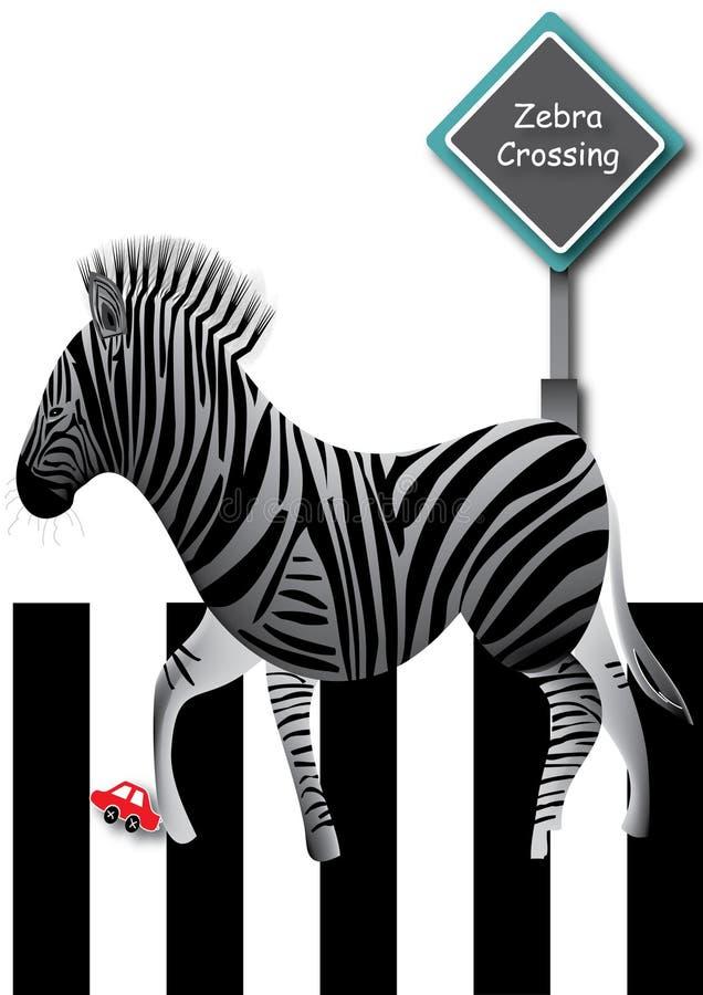 Camminata della zebra illustrazione vettoriale
