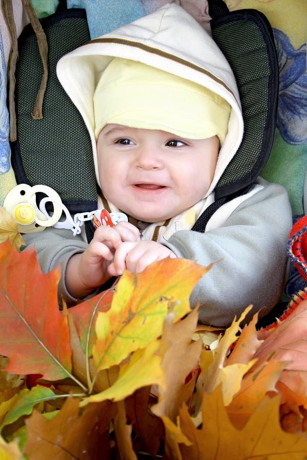 Download Camminata di autunno. immagine stock. Immagine di cuoio - 7314069