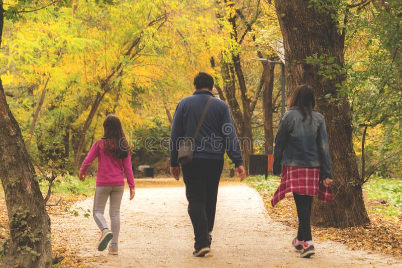 Camminata di autunno nella sosta fotografia stock