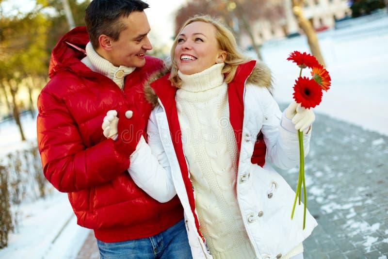 Camminata di inverno immagini stock libere da diritti