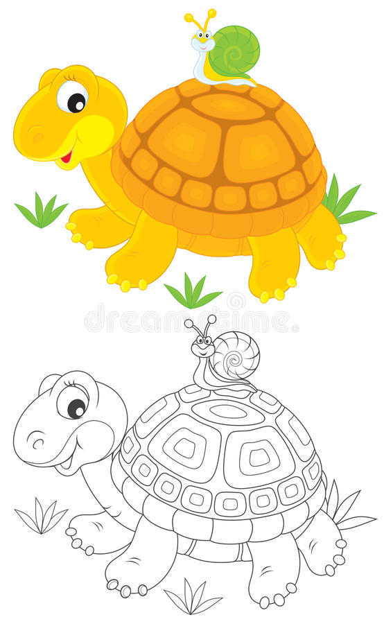 Tartaruga e lumaca illustrazione vettoriale