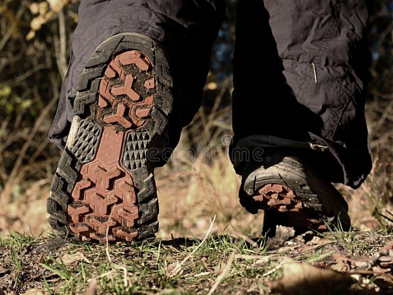 Camminata femminile negli stivali alti di trekking sul percorso di autunno immagini stock