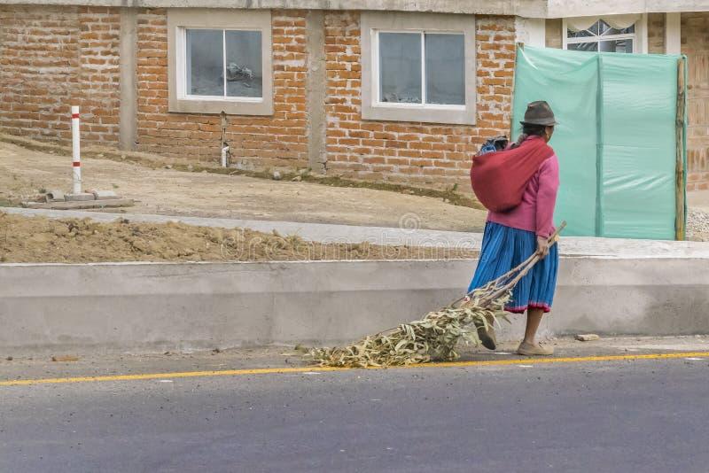 Camminata indigena ecuadoriana della donna immagine stock libera da diritti