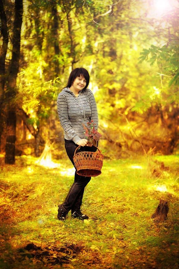 Camminata in legno fotografie stock libere da diritti