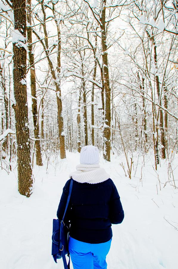 Camminata nella foresta di inverno fotografia stock