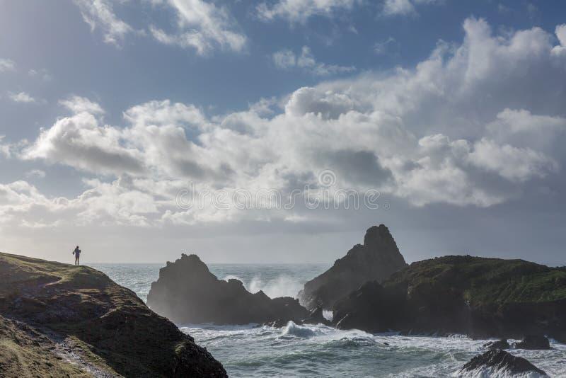 Camminata selvaggia, baia di Kynance, Cornovaglia fotografie stock libere da diritti