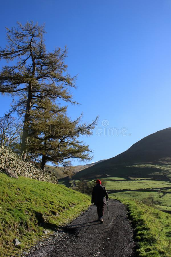 Camminatore con il palo sulla pista nel distretto inglese del lago fotografie stock libere da diritti