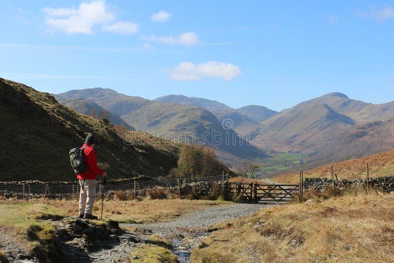 Camminatore maschio sul sentiero per pedoni della montagna nel distretto del lago immagini stock