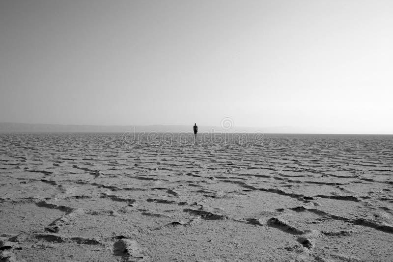 Camminatore nel deserto fotografia stock libera da diritti
