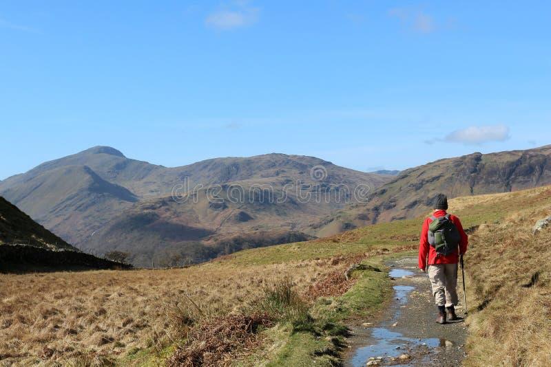 Camminatore sul sentiero per pedoni della montagna nel distretto del lago fotografia stock