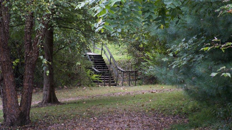 Cammino di escursionismo nella mattina presto fotografie stock libere da diritti