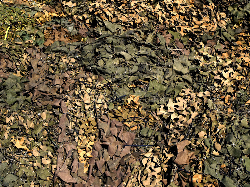 camoflage zdjęcie royalty free