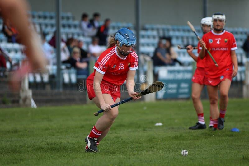 Camogie Junior Championship Semi Final - Limerick versus Cork stock foto