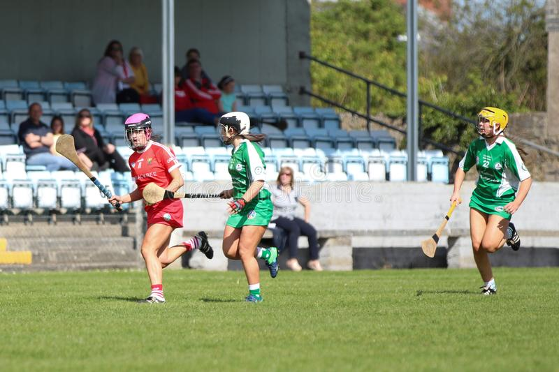 Camogie Junior Championship Semi Final - limerick vs kork arkivbild