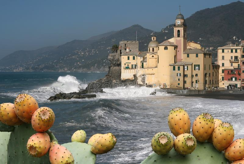 Download Camogli 3 stock image. Image of color, fishing, landscape - 6457229