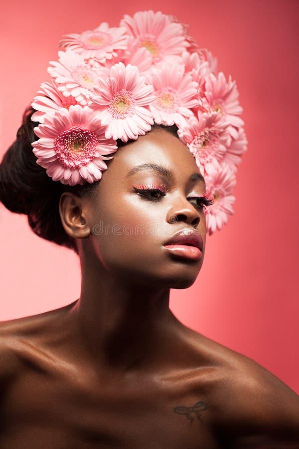Camomila cor-de-rosa imagens de stock