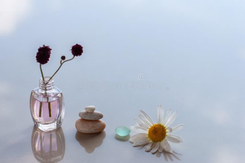 A camomila, o vidro, a pirâmide de três pedras e as garrafas com líquido e um ramo estão na superfície com reflexões fotografia de stock
