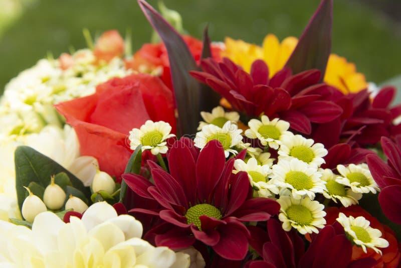 Ζωηρόχρωμα λουλούδια ανθοδεσμών άνοιξη με τα τριαντάφυλλα, το χρυσάνθεμο και camomile Όμορφο δώρο λουλουδιών Πρότυπο για το σχέδι στοκ φωτογραφίες