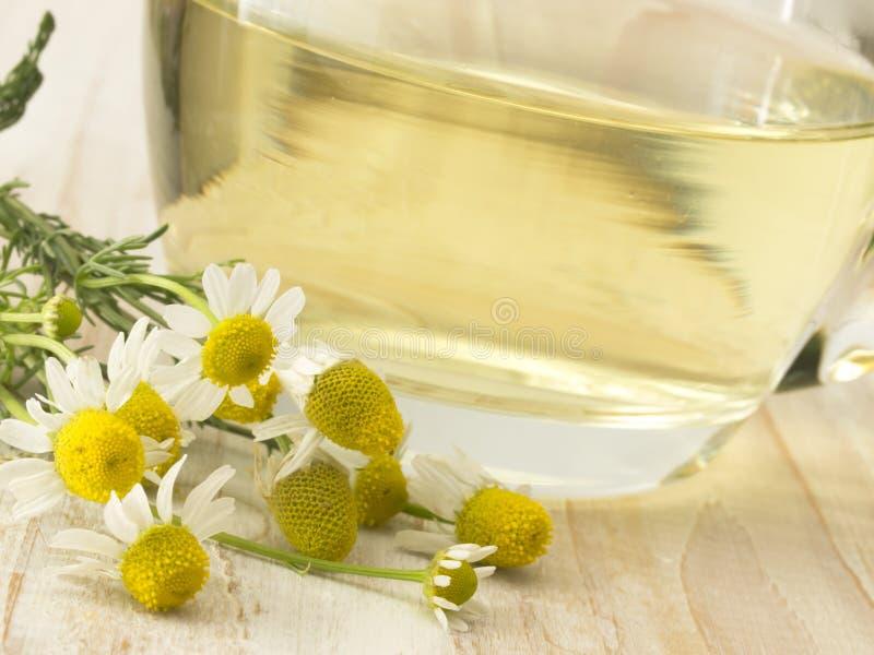 Download Camomile tea stock image. Image of still, alternative - 24879143