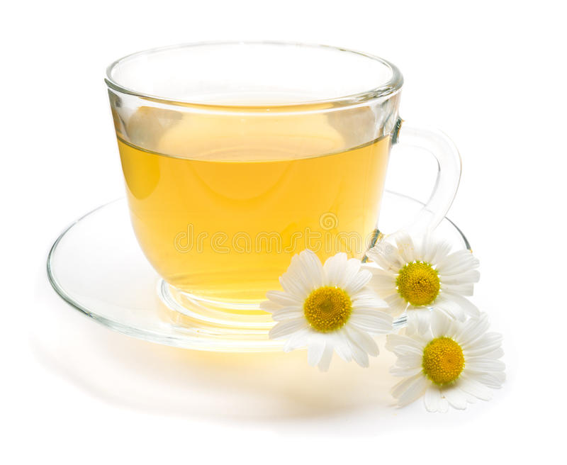 Camomile tea with chamomile flower isolated on white royalty free stock photography