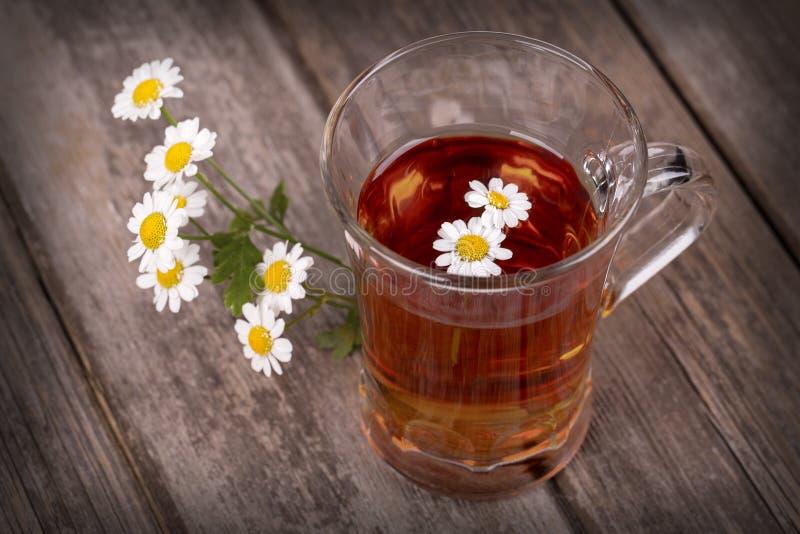 Download Camomile tea stock image. Image of chamomile, closeup - 32553249