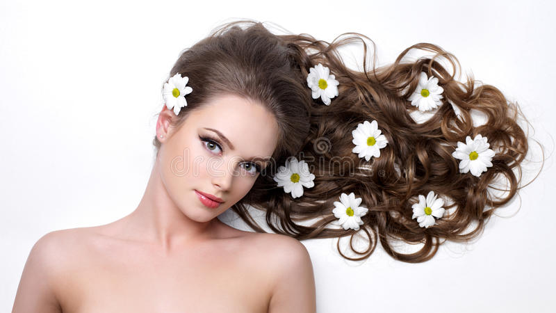 camomiles头发长的妇女 库存照片