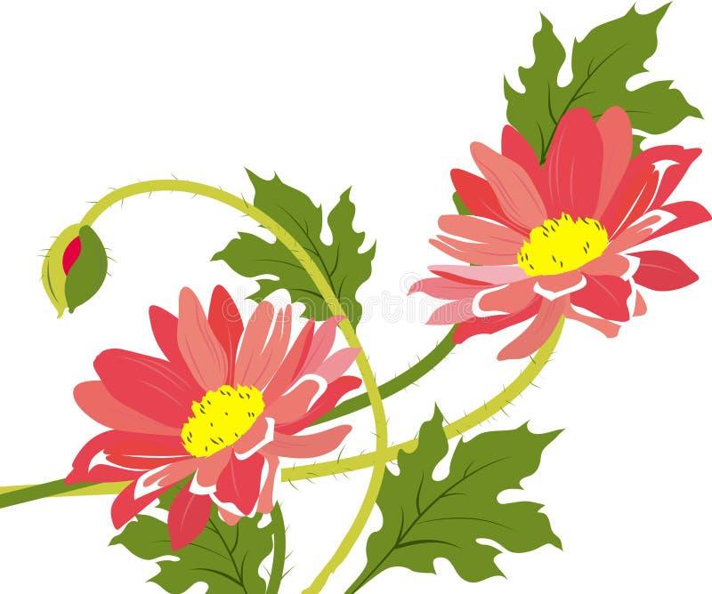 Camomiles. Bouquet. illustration stock