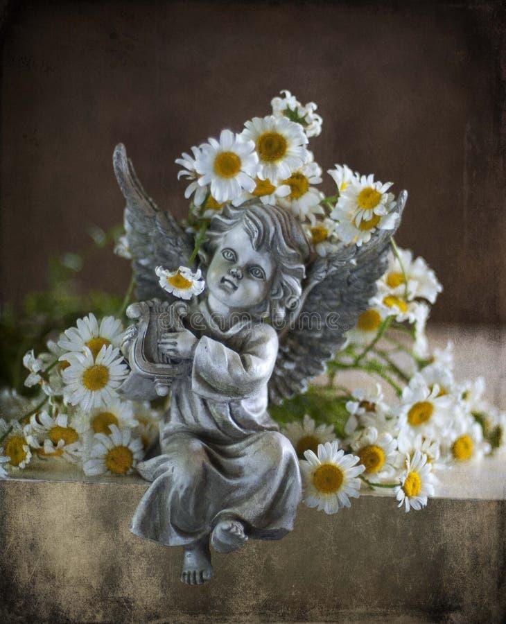 Camomiles e anjo imagens de stock