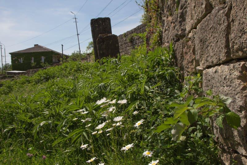 Camomilla, foto delle rovine antiche I mura di cinta rotti della città georgiana antica immagine stock