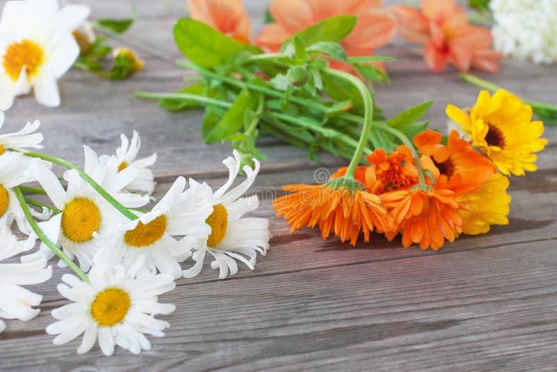 Camomille, Calendula Et D\'autres Fleurs De Jardin Pour Un Bouquet ...