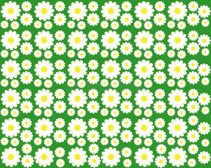 Camomille sur un fond vert illustration de vecteur
