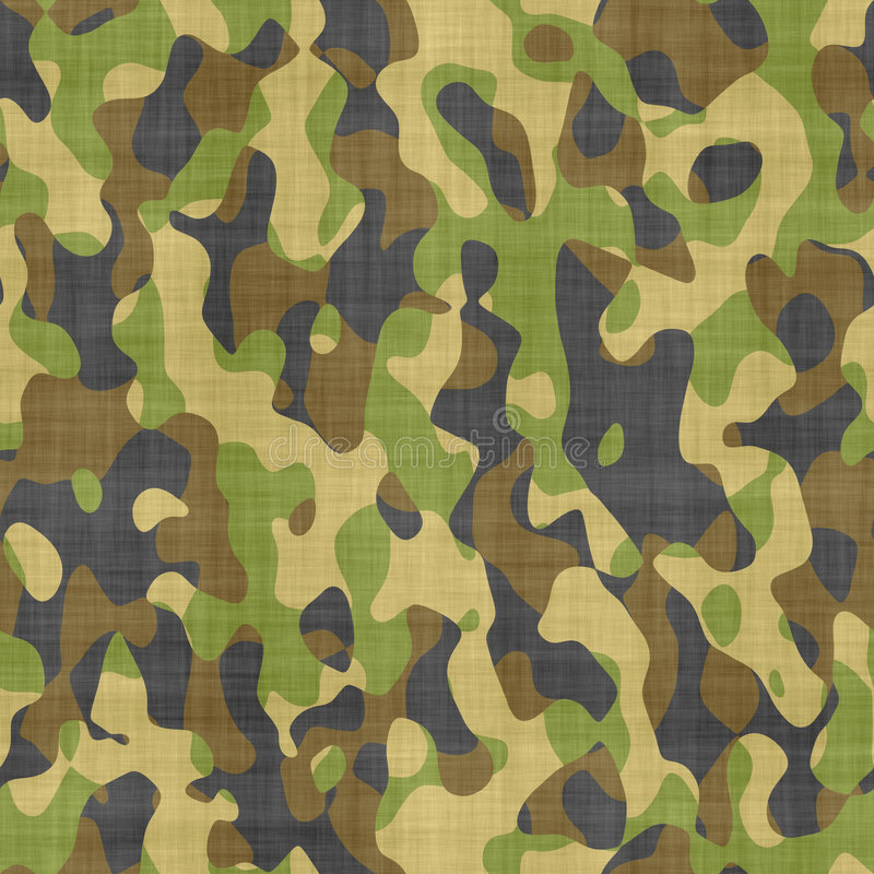 Free Camouflage Cloth Pattern Royalty Free Stock Photo - 2942745