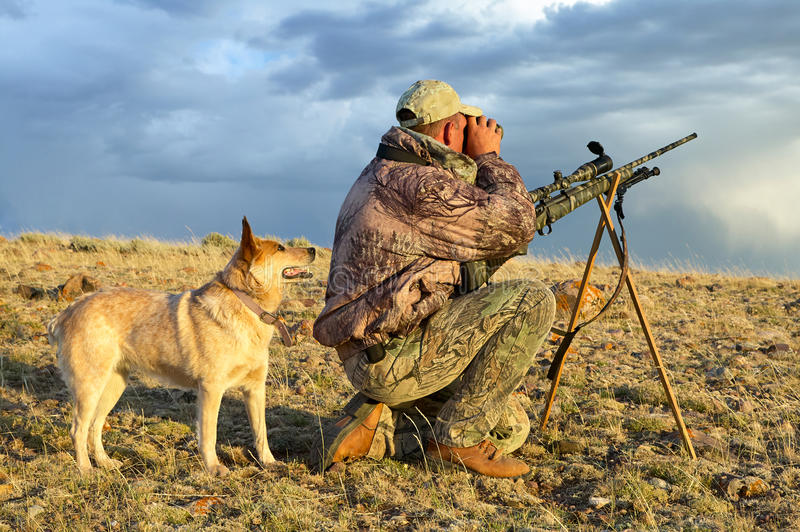 Camouflaged hunter with rifle and tracking dog. A camouflaged hunter kneels beside his tracking dog and rifle and scans an arid landscape for prey while hunting stock photos