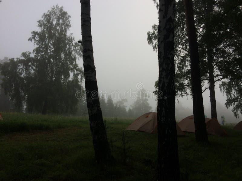 camp photo stock