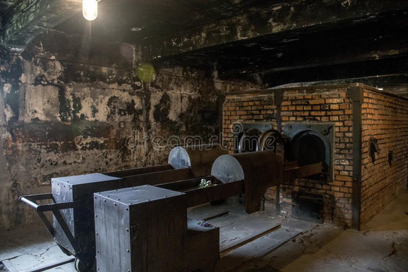 camp auschwitz birkenau kz pologne de concentration en chambre gaz image ditorial image du. Black Bedroom Furniture Sets. Home Design Ideas