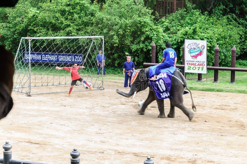 Camp d'Eelephant photographie stock