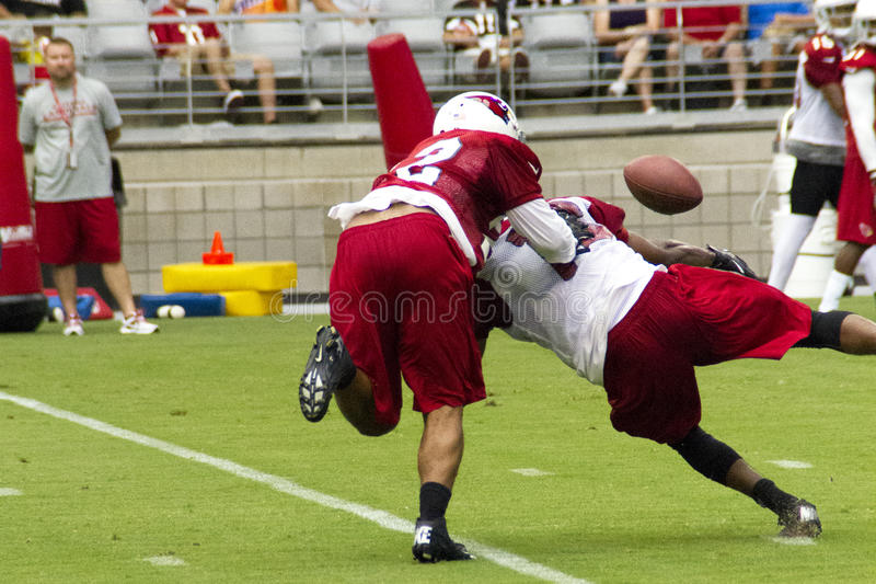 Camp d'entraînement d'équipe de football d'Arizona Cardinals de NFL images libres de droits