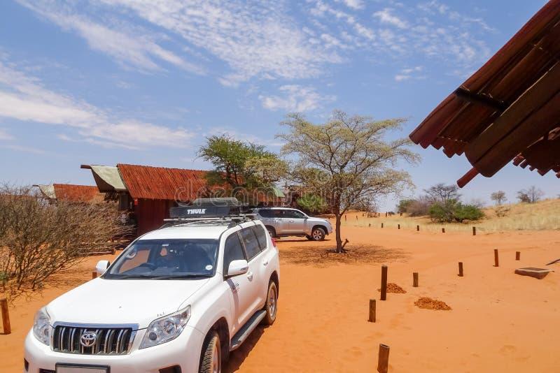25/01/2019, camp de région sauvage de Gharagab, parc de Kgalagadi Tranfrontier, Afrique du Sud photo stock