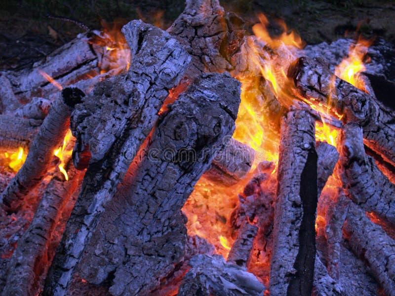 Camp-fire imagem de stock
