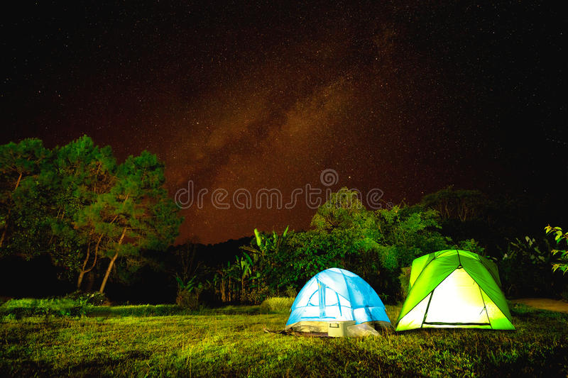 Camp In Forest At Night With Star Background
