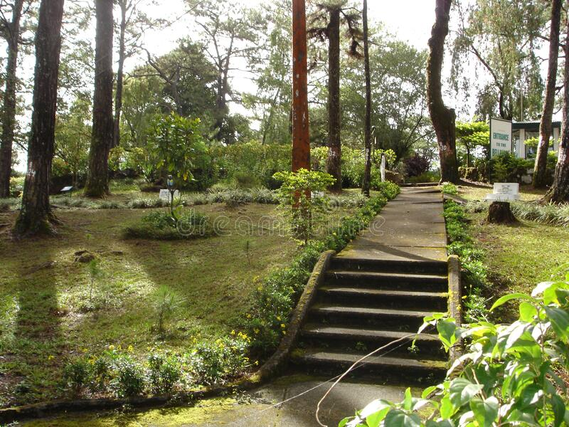 Camp john hay Baguio city stock images