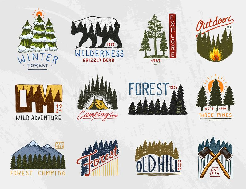 Camp logo, mountains coniferous forest and wooden badges. engraved hand drawn in old vintage sketch. emblem tent tourist stock illustration