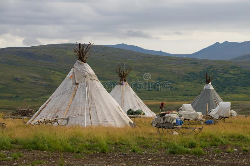 Camp of nomad reindeer herders, August morning. Yamal, Russia royalty free stock photos