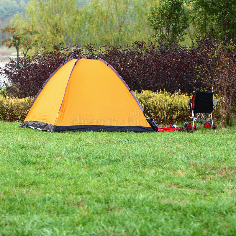 Download Camp tent stock image. Image of tree, outdoor, yellow - 14890841