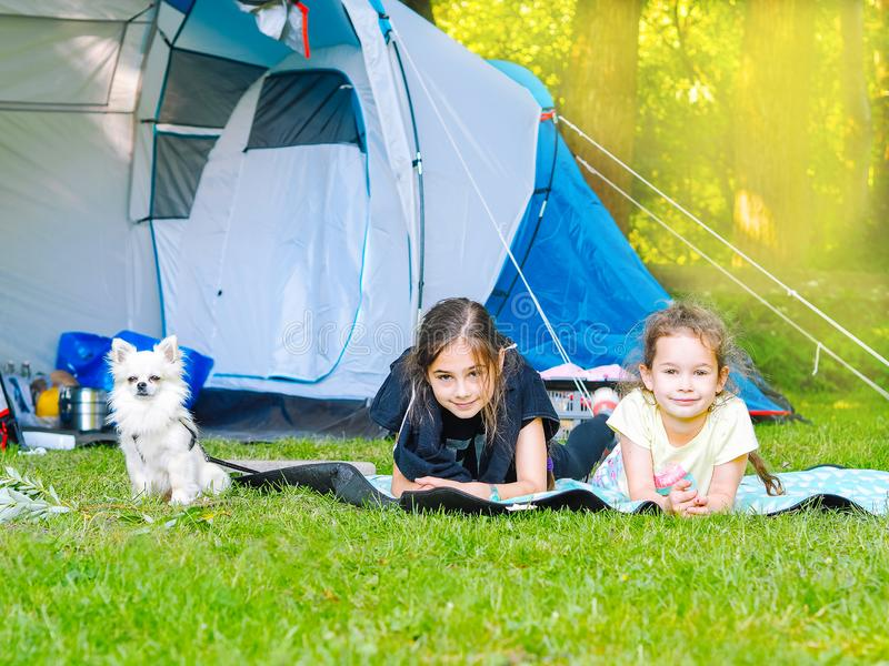 Camp in the tent - girls with little dog chihuahua sitting together near the tent stock images