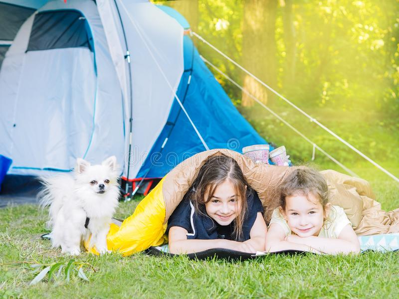 Camp in the tent - girls with little dog chihuahua sitting together near the tent. Camping with children stock photo