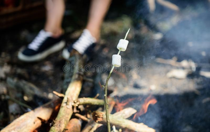 Camp tradition. Marshmallows on stick with bonfire and smoke on background. Holding marshmallow on stick. How to roast stock images